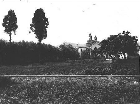 Vista de l'hort amb el Convent del Bon Consell al fons. 1950.